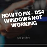 DS4 Windows Not Working