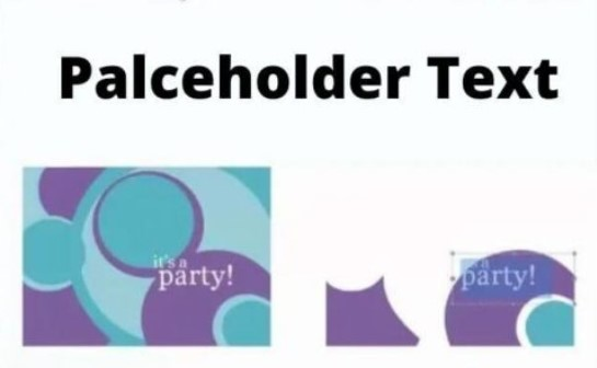 Placeholder Text