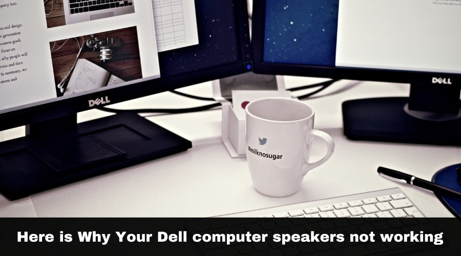 Why Your Dell computer speakers not working
